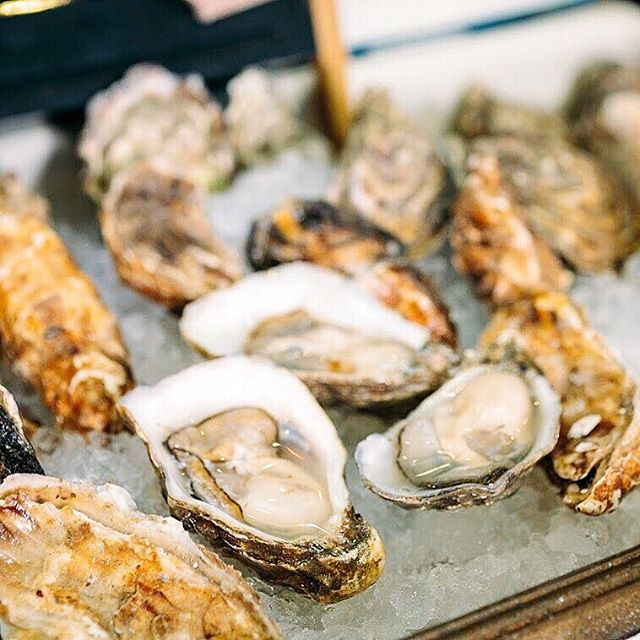 #PPLAFoodFare 2019: Blue Plate Oysters by @blueplateoysterette. • • • • • Check out Blue Plate Oysterette in #LosAngeles or one of our MANY Food Fare participants to reminisce about Food Fare 2019 AND get some of the best food around. • Photo by @VanessaStump.com • #StandWithPP #PlannedParenthood #NonProfit #Events  #food #foodie #FoodPorn #Yummy #FeedFeed #Eats #Colors #Colorful #Fresh #InstaFood #FoodInspiration #FoodPhoto #FoodStyling #PhotoOfTheDay #PicOfTheDay #BestOfTheDay #InstaGood #InstaMood #InstaDaily #Oyster #Ocean #Seafood #Blue