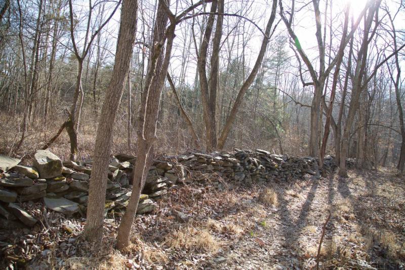 Cedar Ridge Rock Wall - photo by Laurie Cleveland