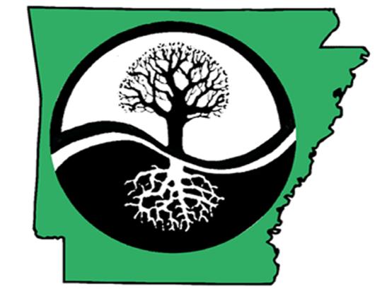 Logo NSBA.png