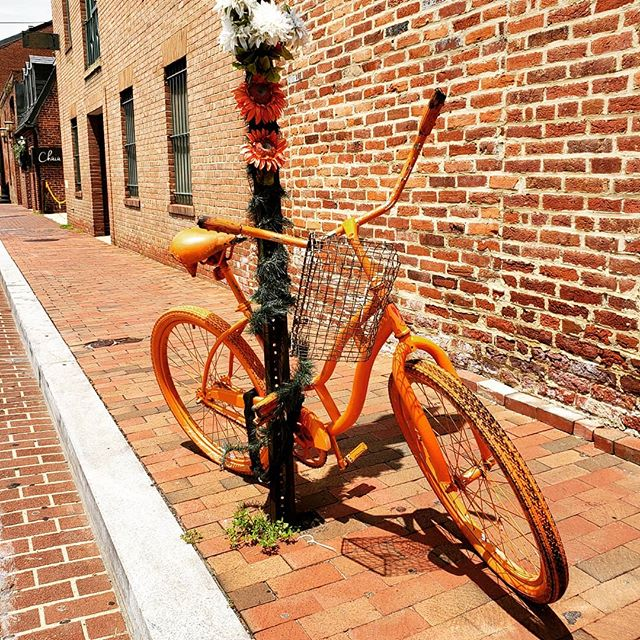 There is always something beautiful and interesting to see in Georgetown. Exposed brick walls, brick sidewalks and a pop of color. Grace Street is a gem! What is your favorite Georgetown Street?