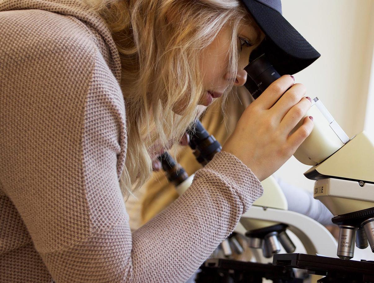 microscope-now.jpg