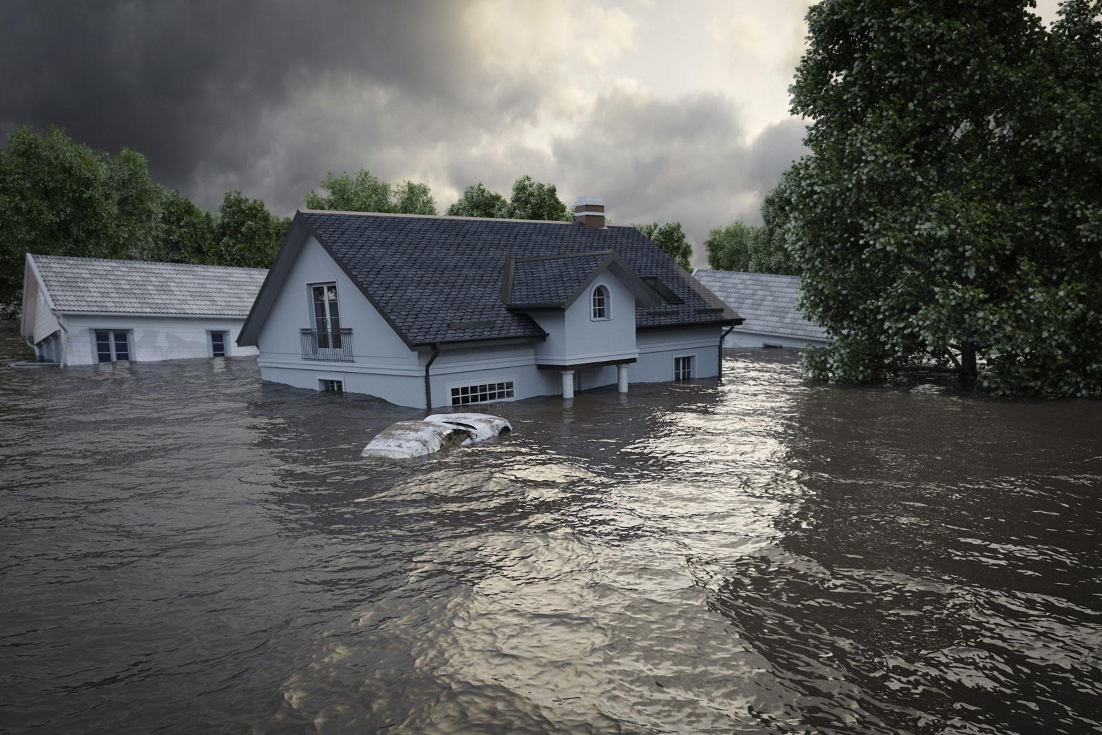 FLOOD AND RAIN STORM REPAIR LEADS