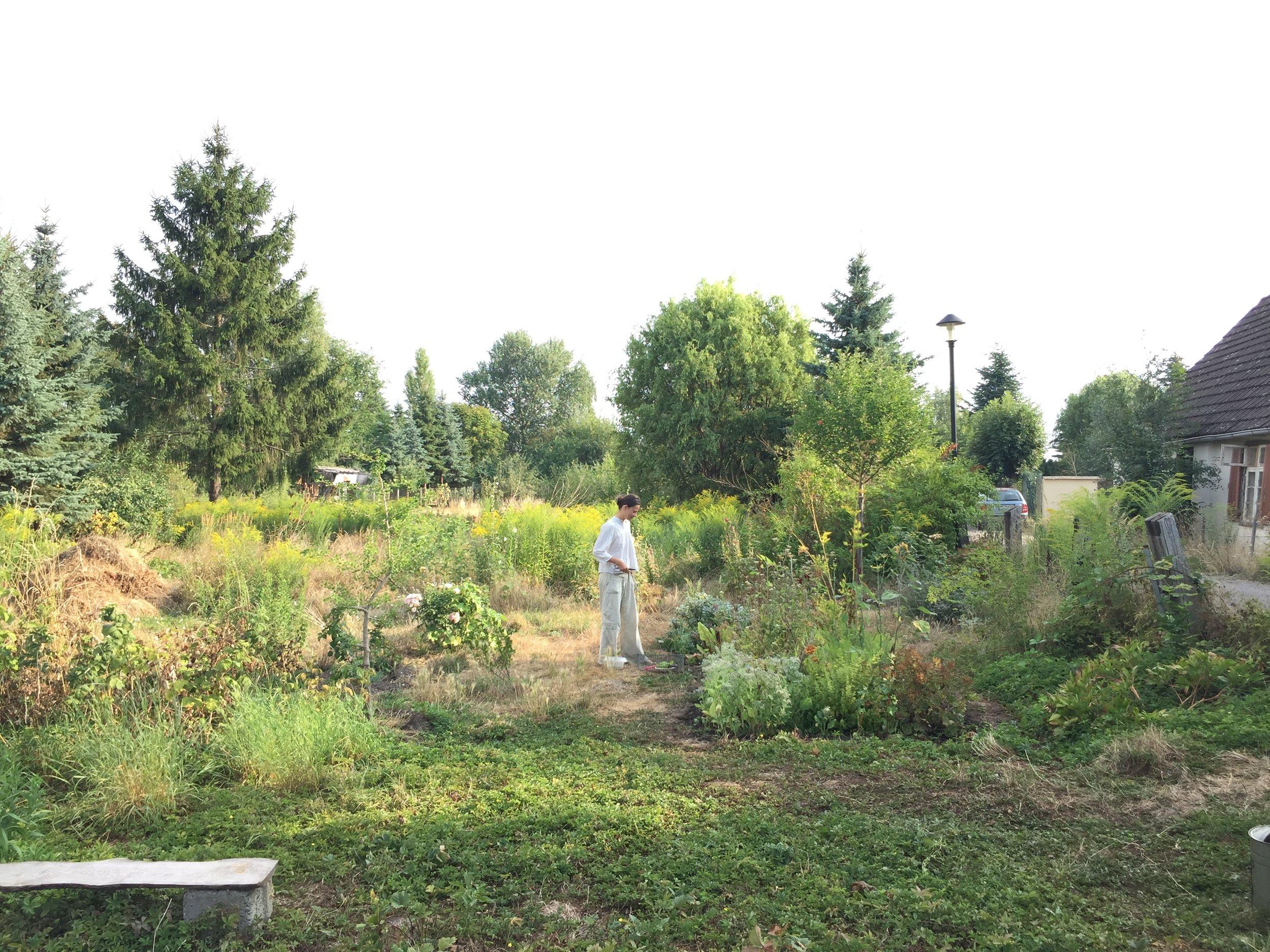 Anne in ihrem Garten