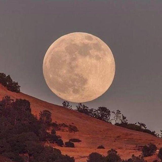 The full moon is upon us. Intensity in our feelings may occur 😳. Via @iamwellandgood . . #fullmoon #aquarius