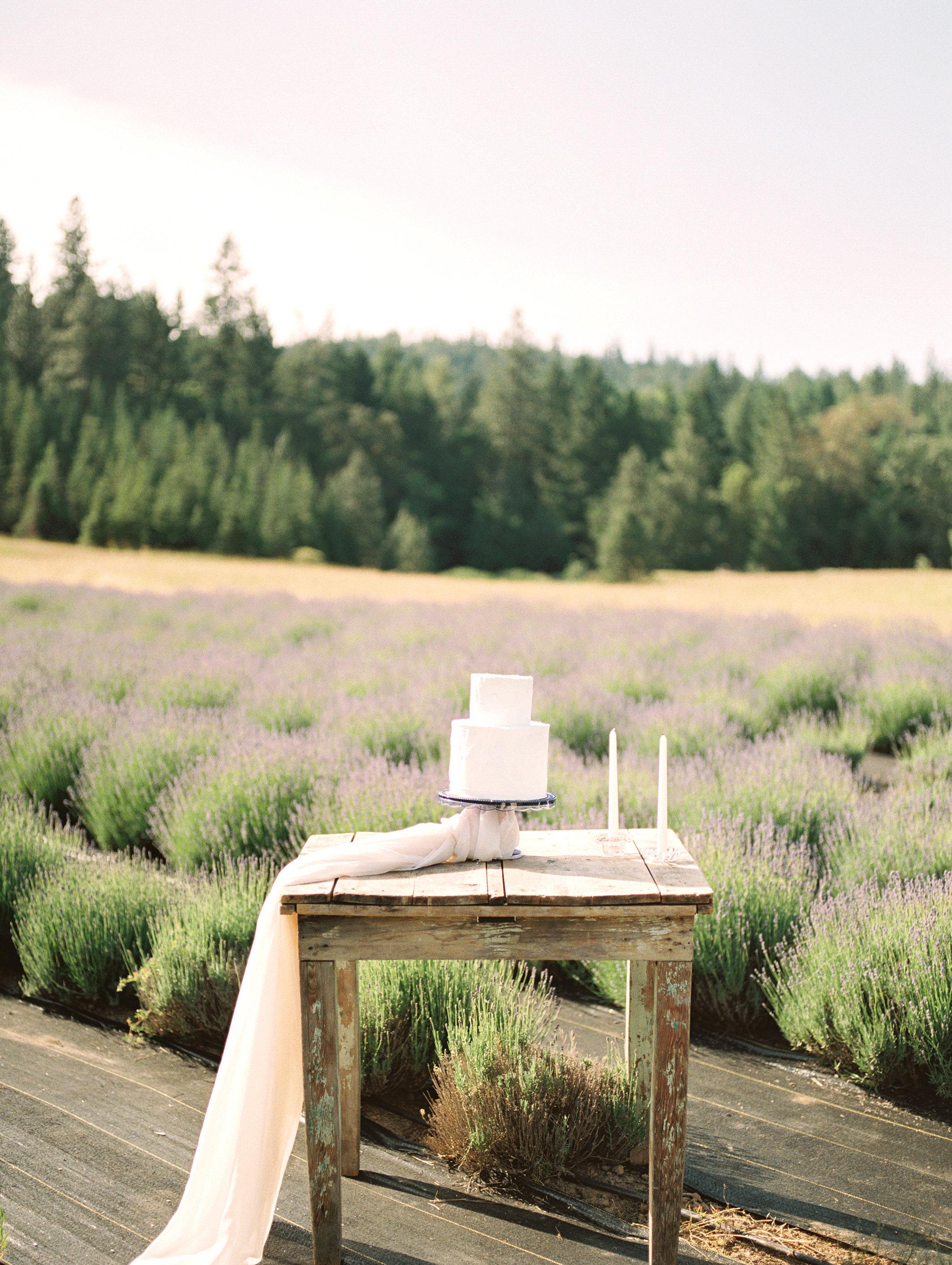 lavender-romance-emilykirstenphotography-19.jpg