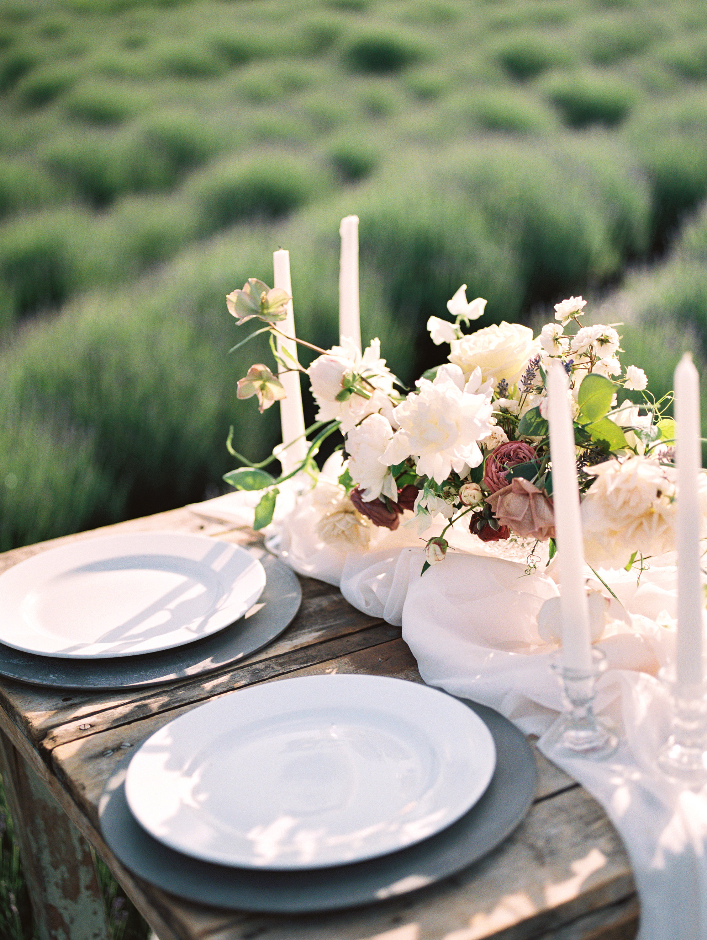 lavender-romance-emilykirstenphotography-27.jpg