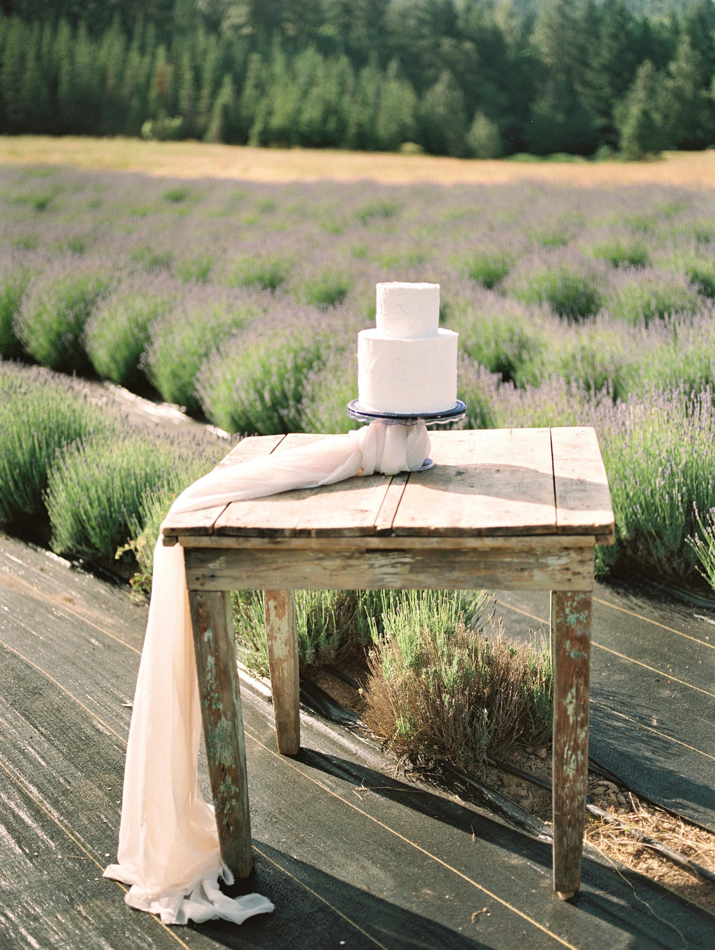 lavender-romance-emilykirstenphotography-17.jpg