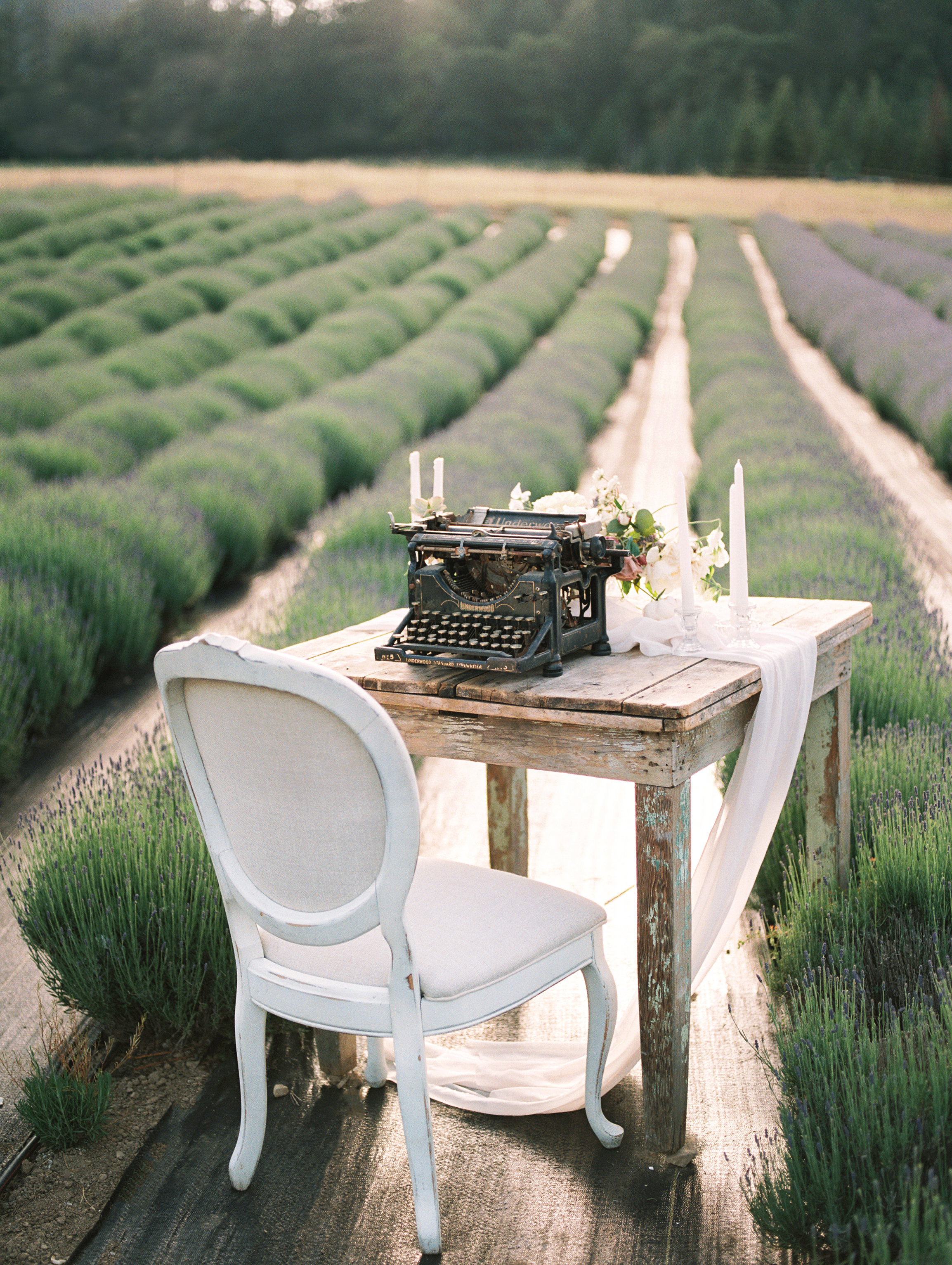 lavender-romance-emilykirstenphotography-47.jpg