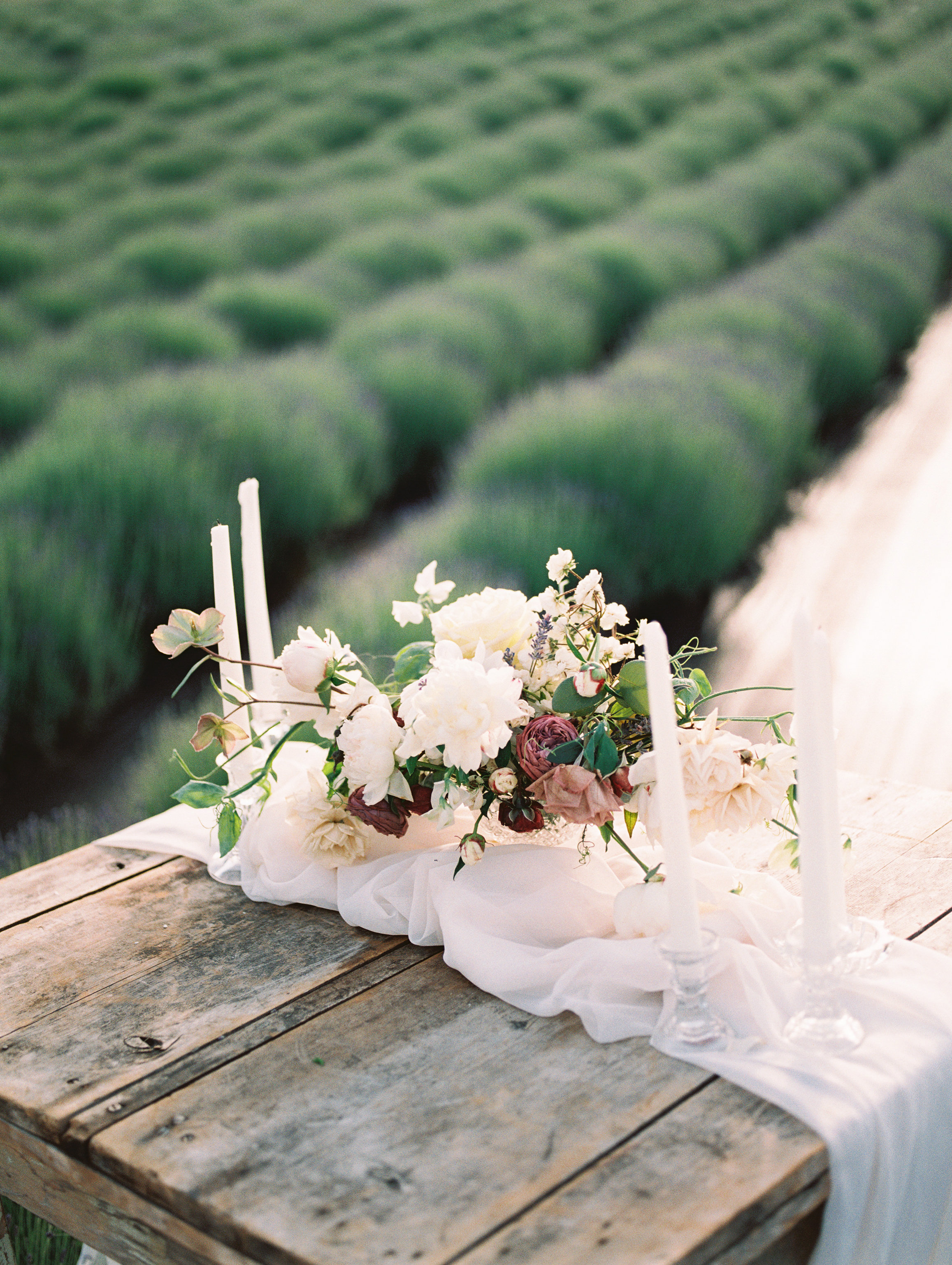 lavender-romance-emilykirstenphotography-54.jpg