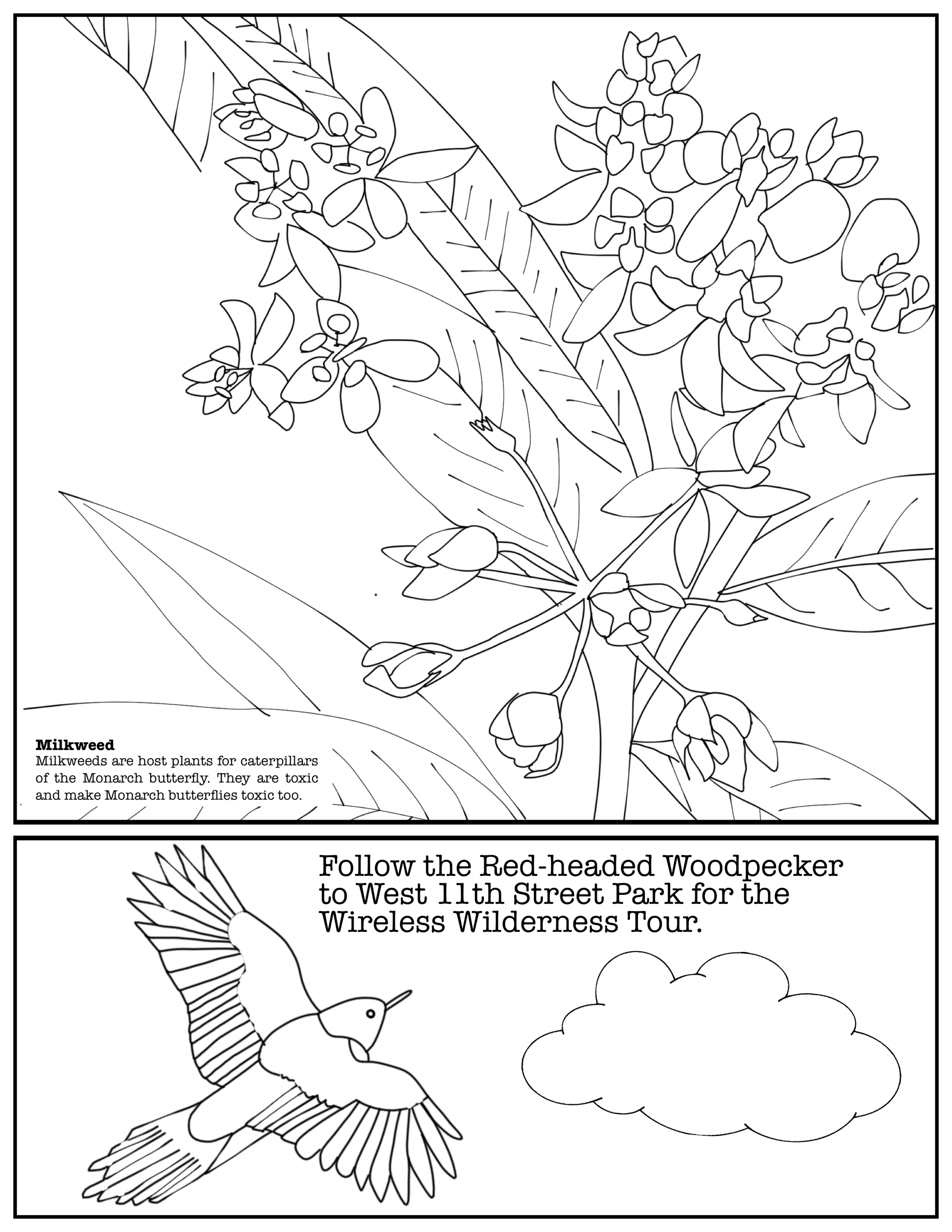 Coloring Book Layout 3.png