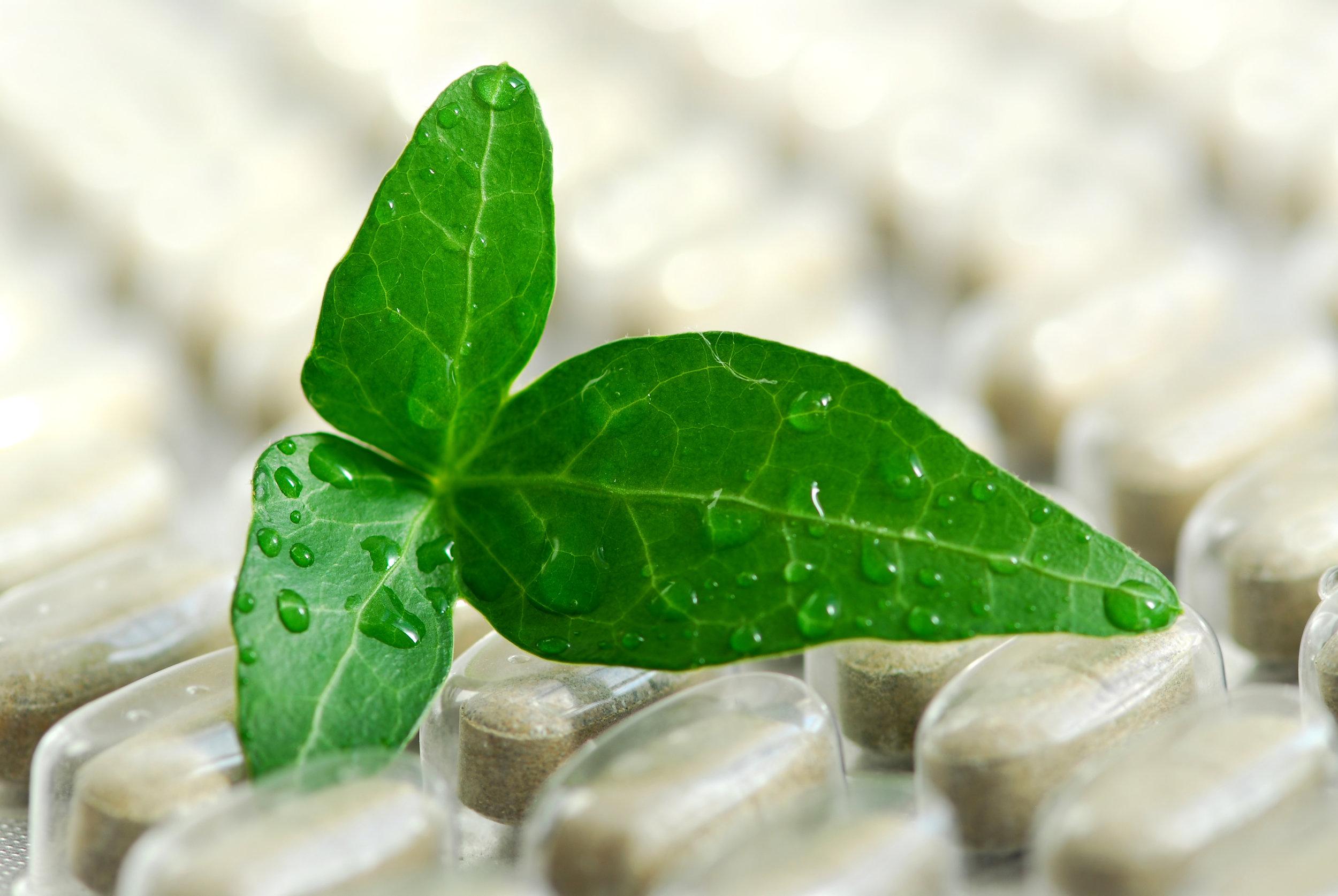 Plants before Pills -