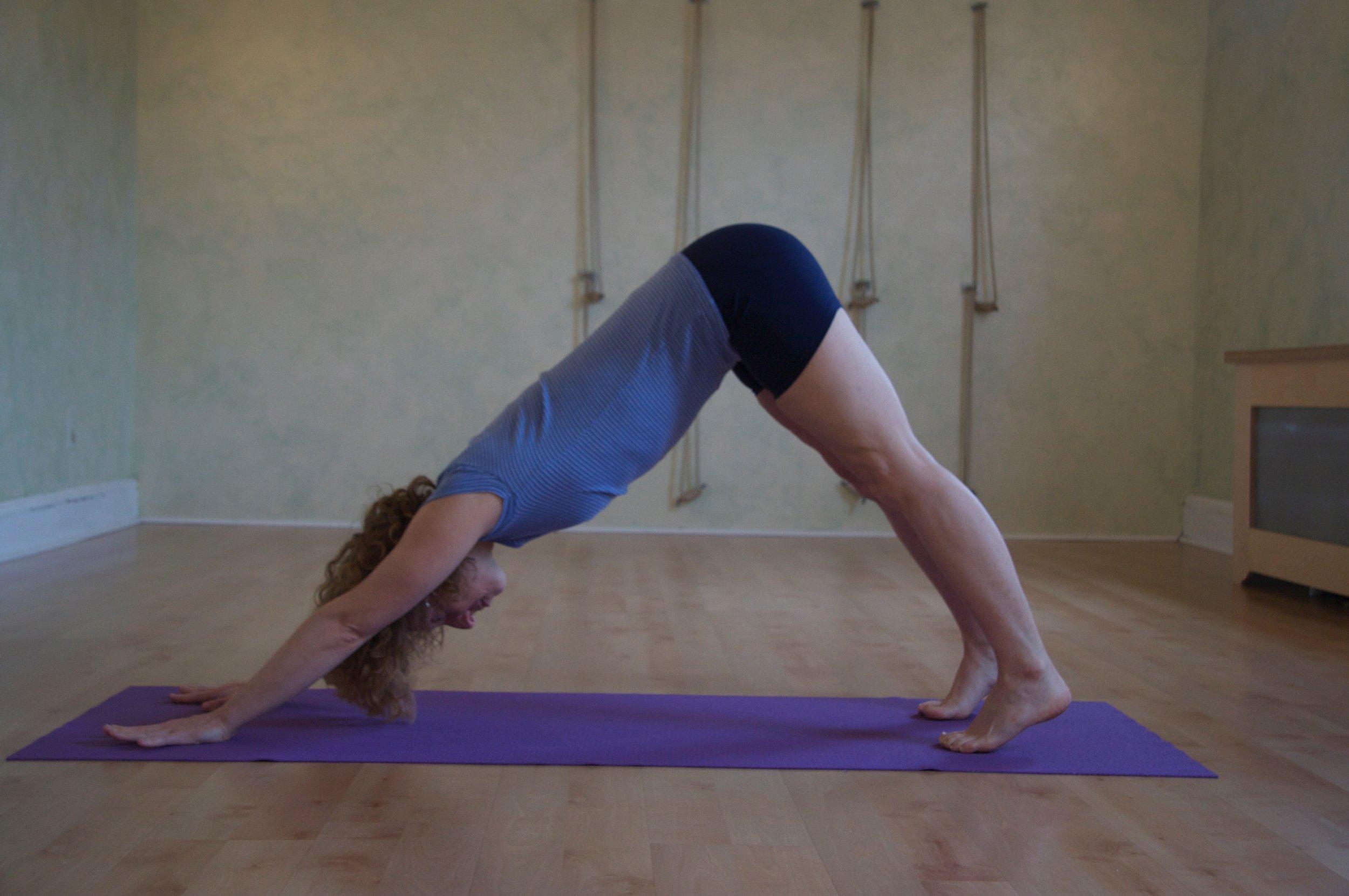 download yoga.jpg