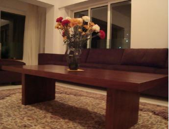 Zirak Coffee Table -