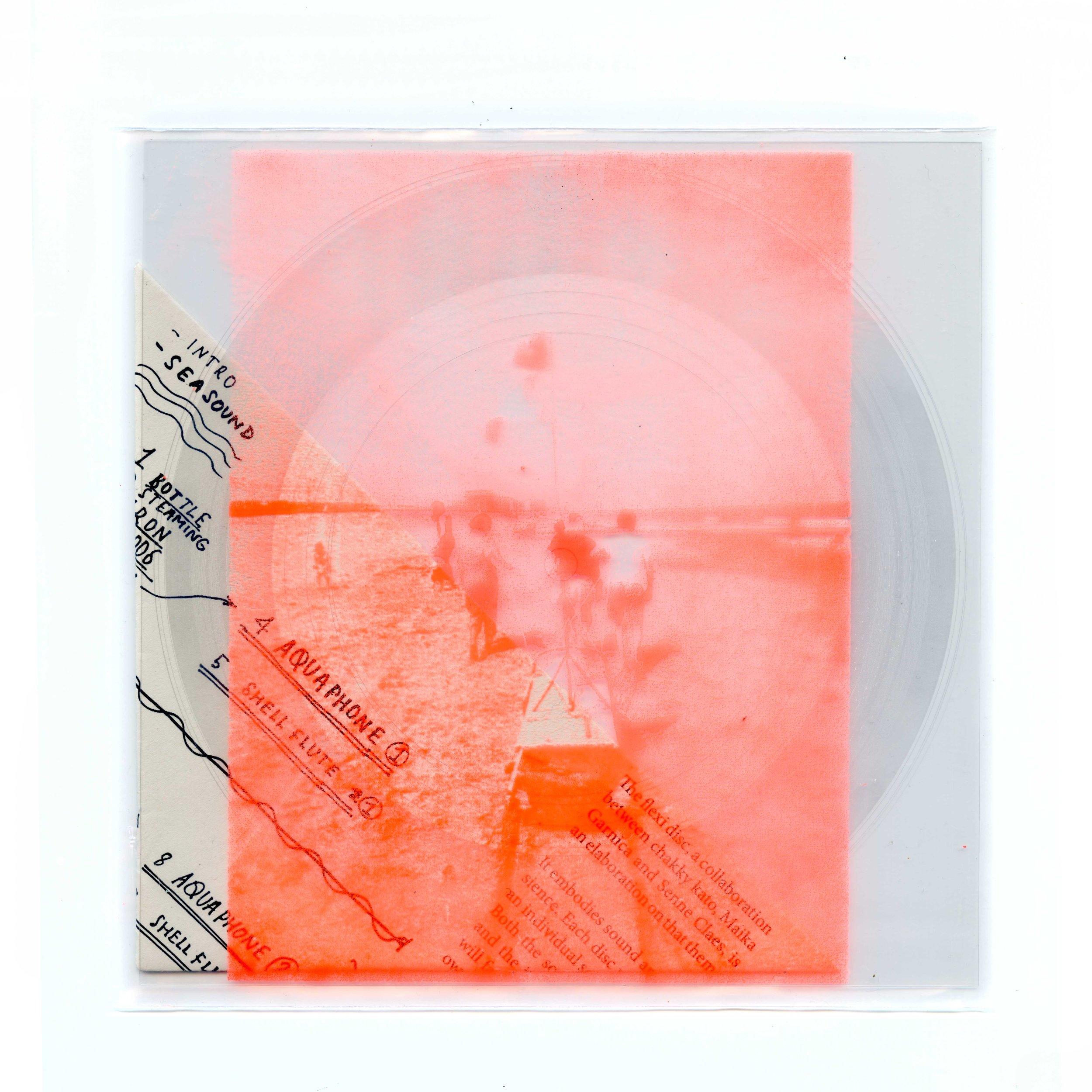 Flexi disc 2 KLEIN.jpg