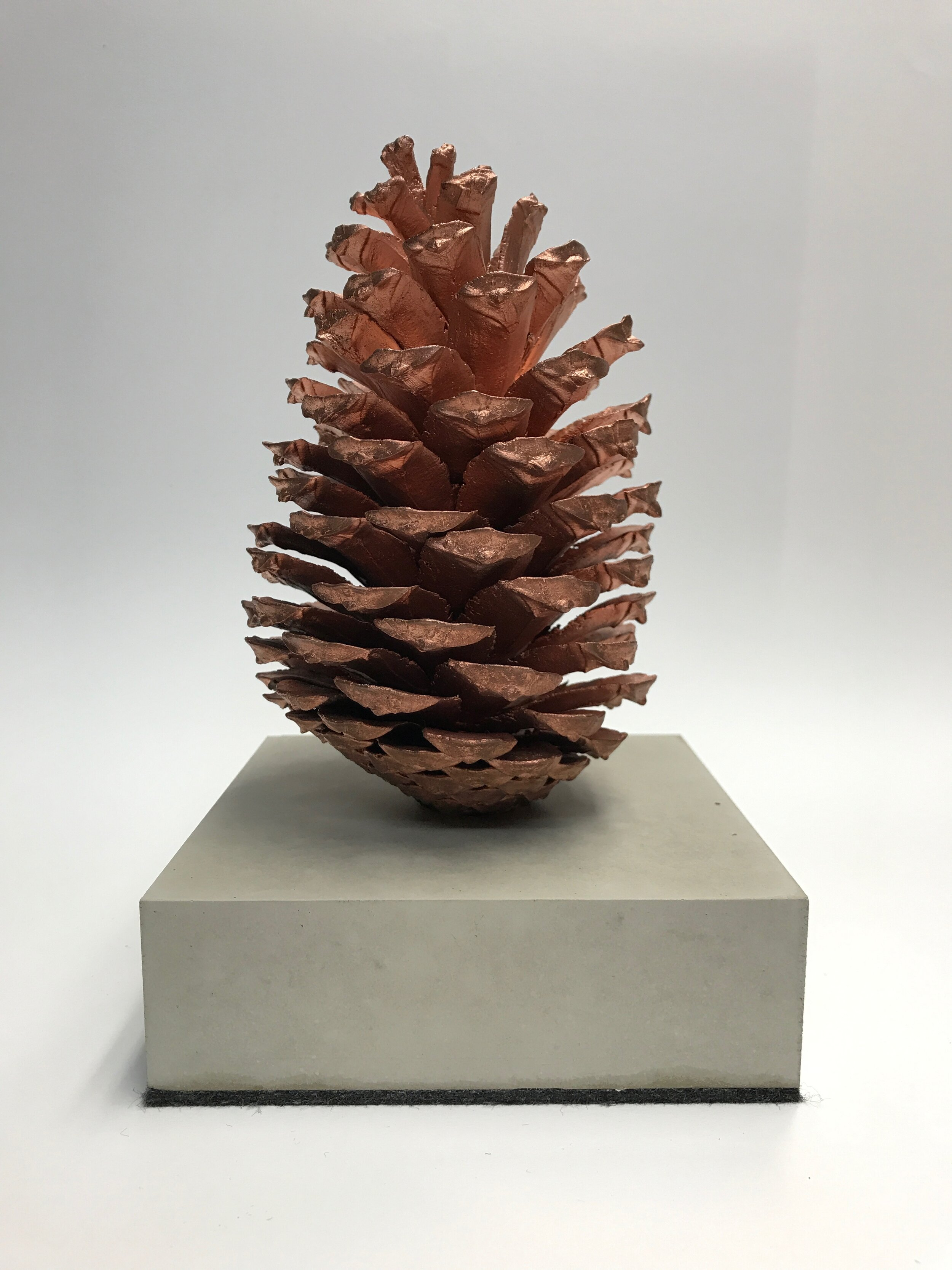 Bronzeguss auf einem Sockel aus Nanobeton. Für einen Kunden aus der Forstindustrie. Der Zapfen als Zeichen der Zukunft.