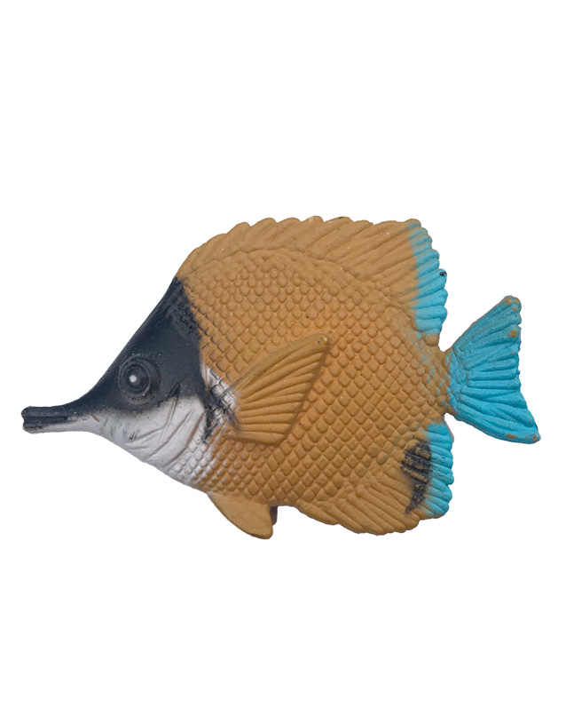 kleiner_Fisch.png