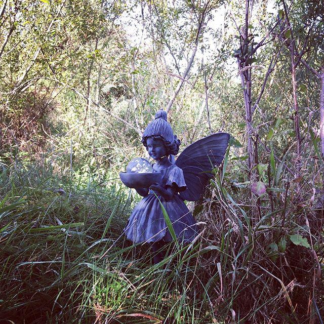 Hobbit Hideaway #fairyglen #lovenature #loveyourself
