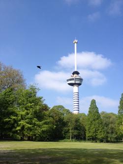 rotterdam-city1-1.jpg
