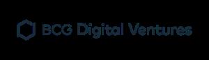 bcg-dv-logo-300x87.png