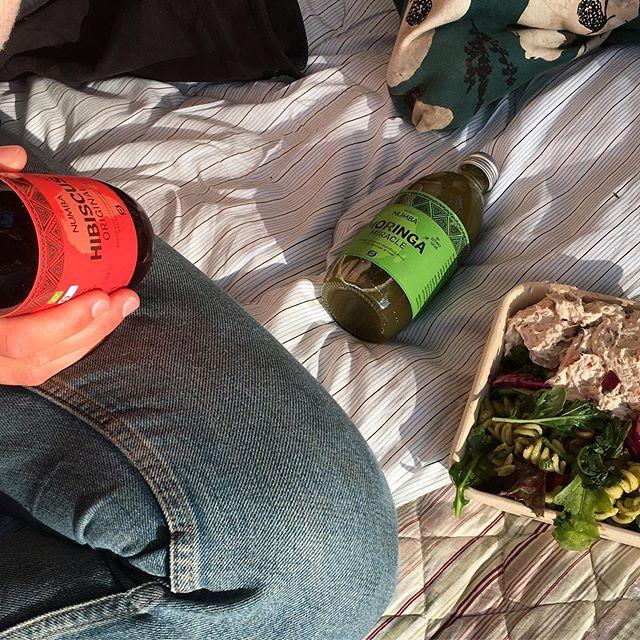 Frokost i det grønne med lidt ekstra grønt ☺️☀️🌿 . . . . #frokost #piknik #picnic #salad #salat #juice #superfood #greenfood #healthyfood #eatgreen #vegan #vegansk #økologi #øko #organic #moringa #hibiscus #baobab