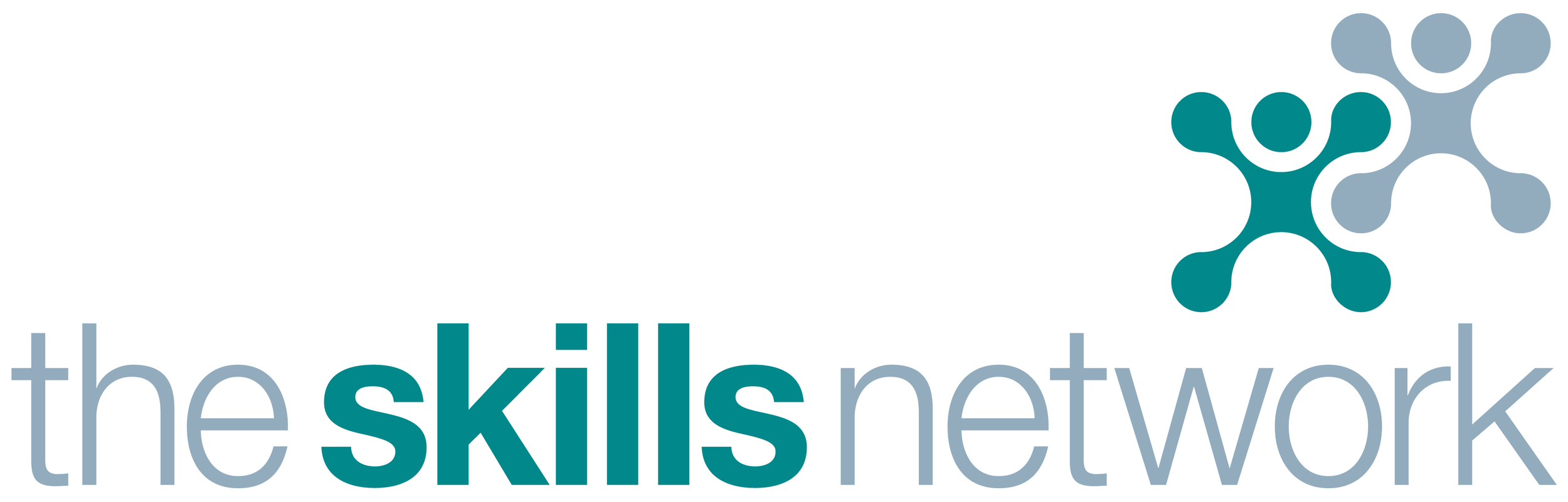1547657431815-the skills network logo.png