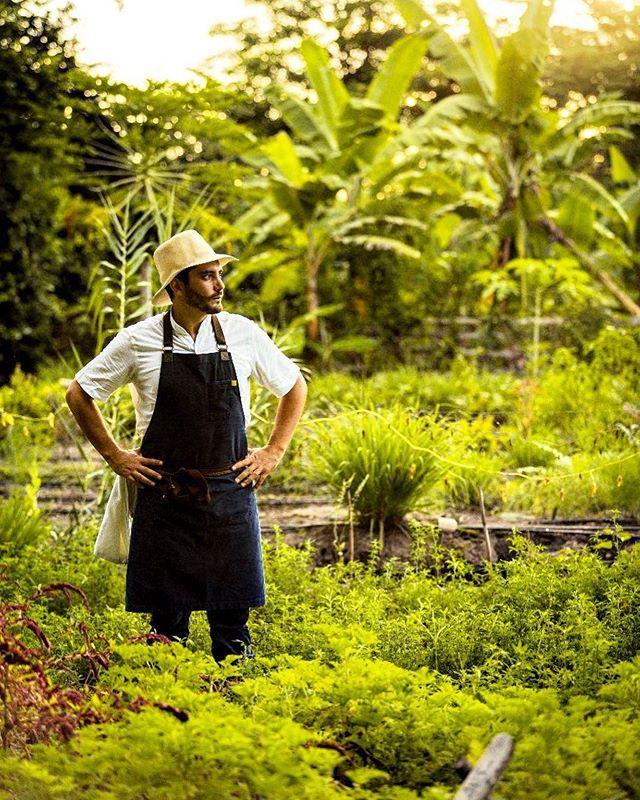 """El futuro de los alimentos son las plantas."" #love#nature#plants#360degreesofhonor#biodiversidad#manabi#ecuador🇪🇨 @bocavaldivia @tanusas.hotel @fundacionamor7.8 @tanusas.villas  image by @joshdegel @carlamurtinho"