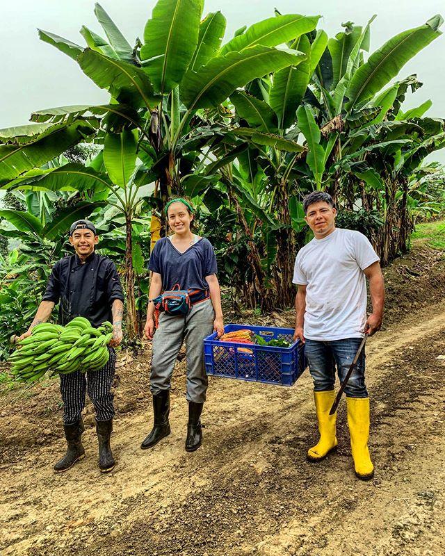 """""""Mientras más nos acercamos al origen de los productos que utilizamos mejor llegamos a comprender los procesos y transformaciones que suceden como parte del mundo culinario,a mayor entendimiento mejor es el desempeño,la motivación y la inspiración""""  @bocavaldivia @tanusas.hotel #bocavaldivia #biodiversity #360degreesofhonor #love#freshonly#auto-sostenible#manabi#ecuador🇪🇨"""