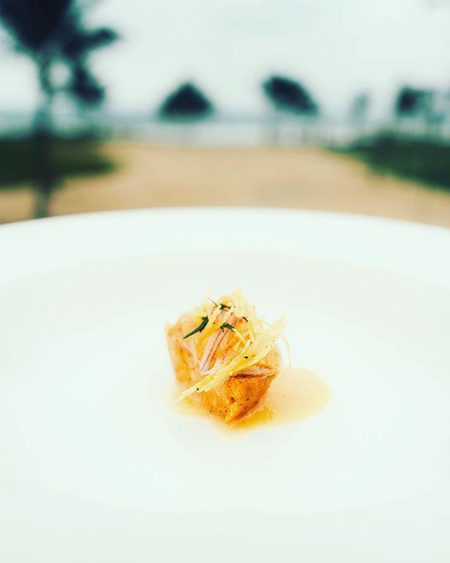 Delicado Tamal de plátano verde,chicharrón,erizo fresco,chillangua y ají de maní. @bocavaldivia @tanusas.hotel #bocavaldivia #biodiversity #freshonly#sustainable#tastingmenu#manabi#ecuador🇪🇨