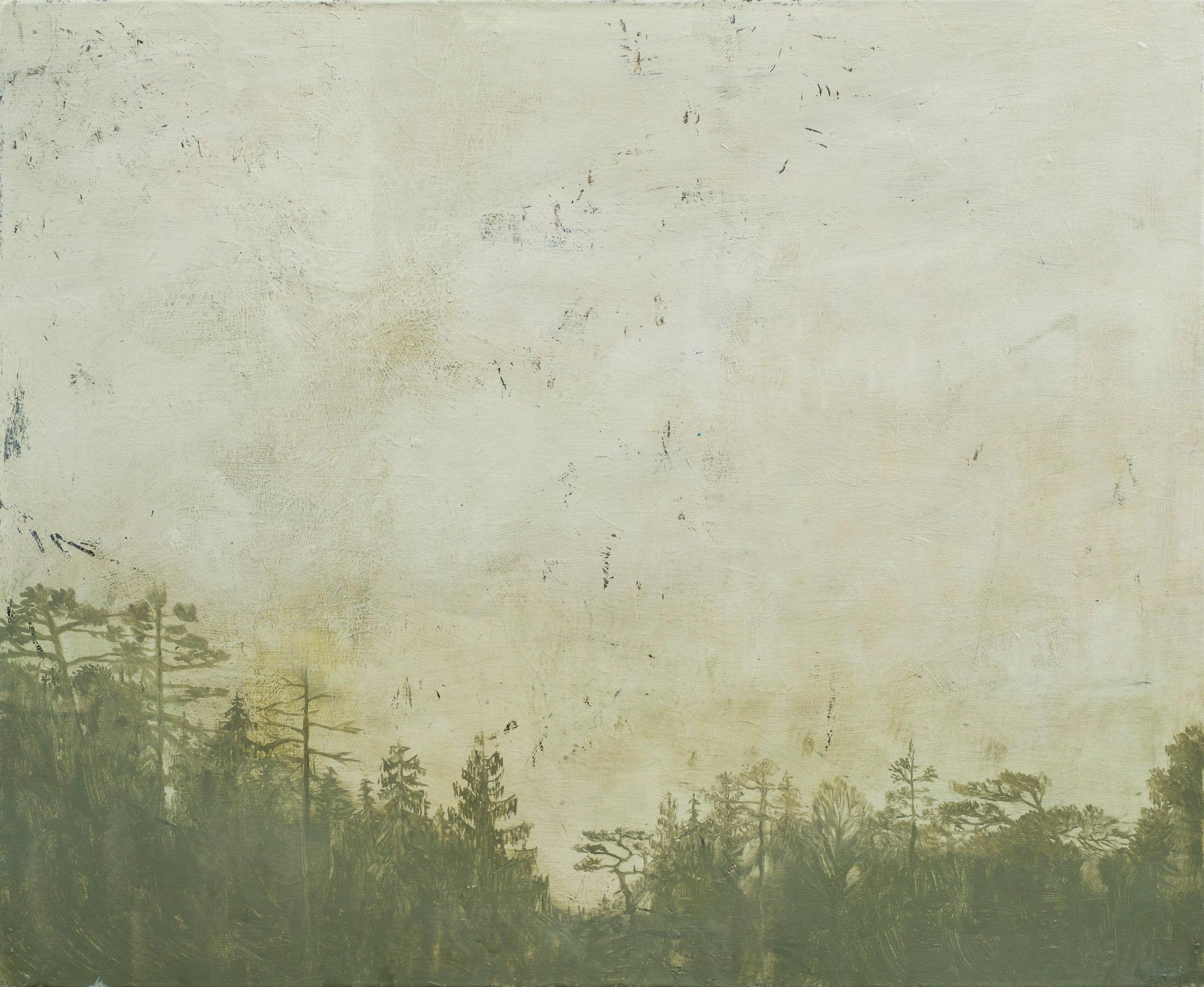 Grålysning  63x77 cm opl 2015