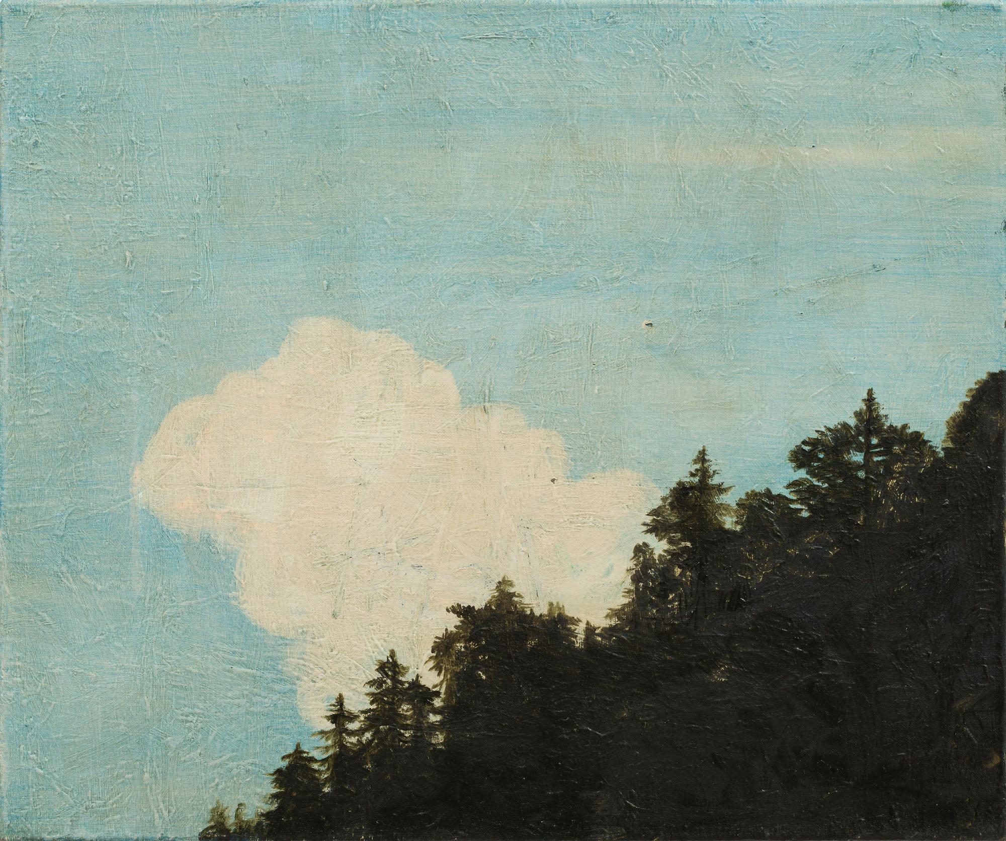 Hvit sky over treranden  31x37 cm opl 2015
