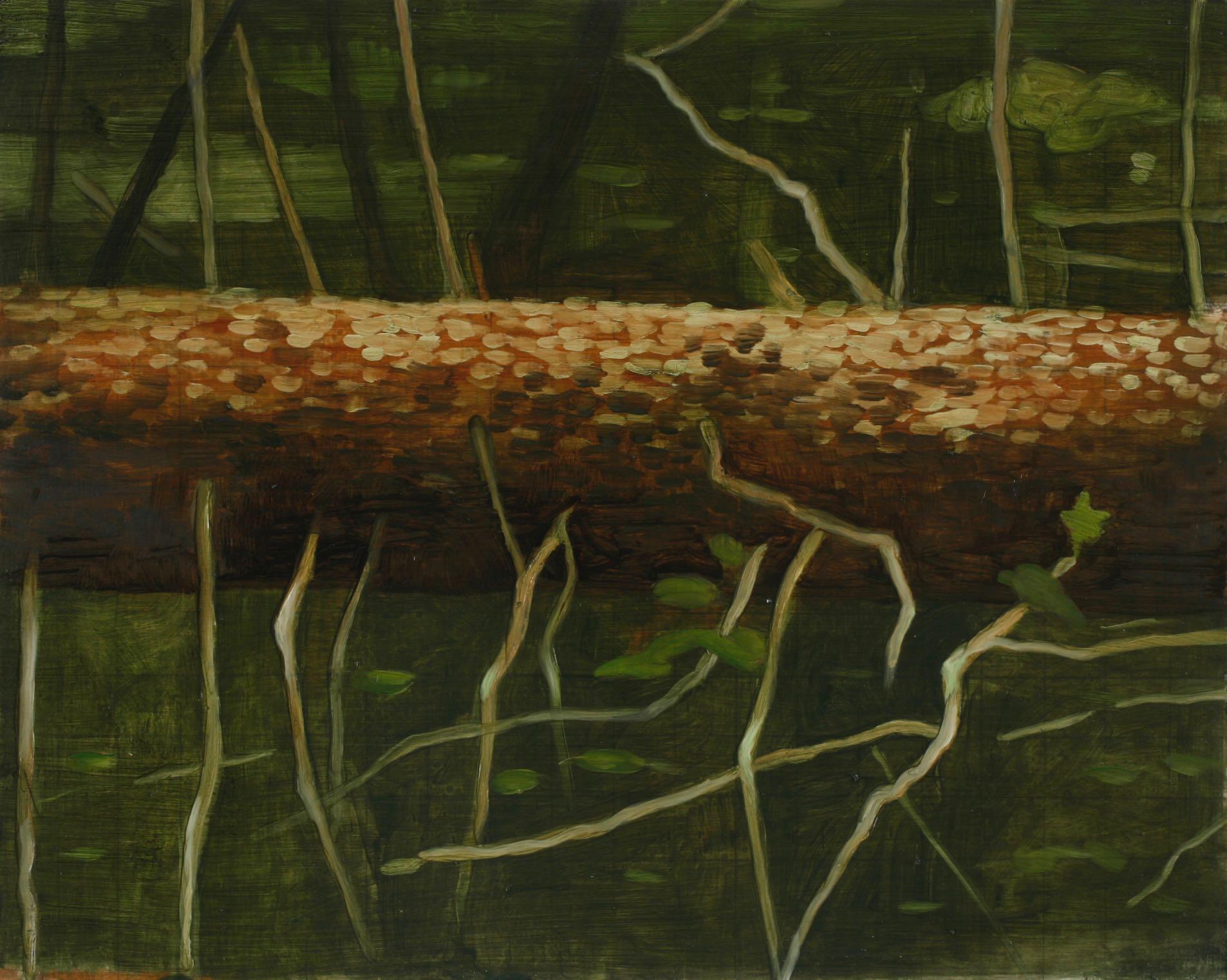 Skisse, liggende  17,5x25,5cm akryl/tusj på kartong 2007