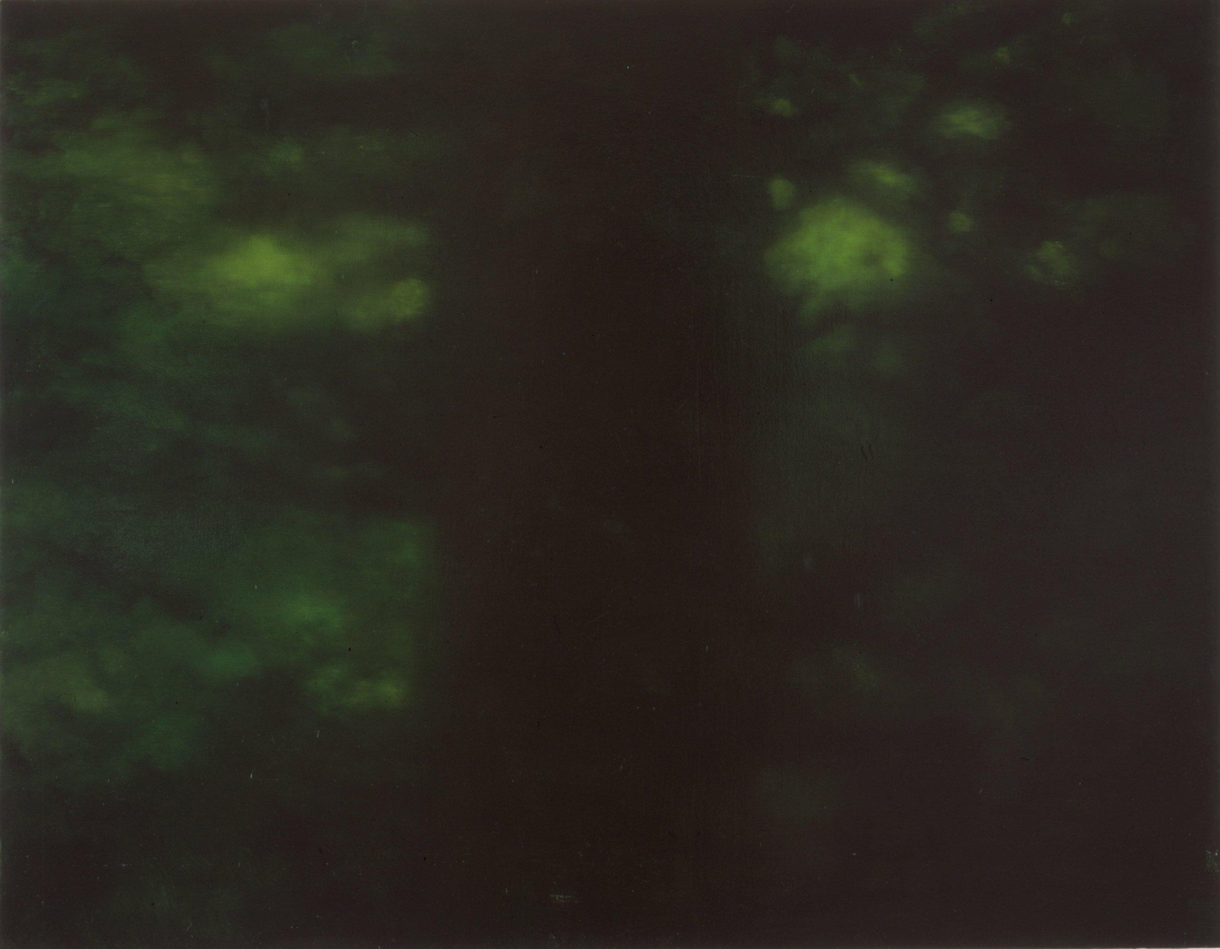Skogmørke  67x86,5cm olje på plate 2002