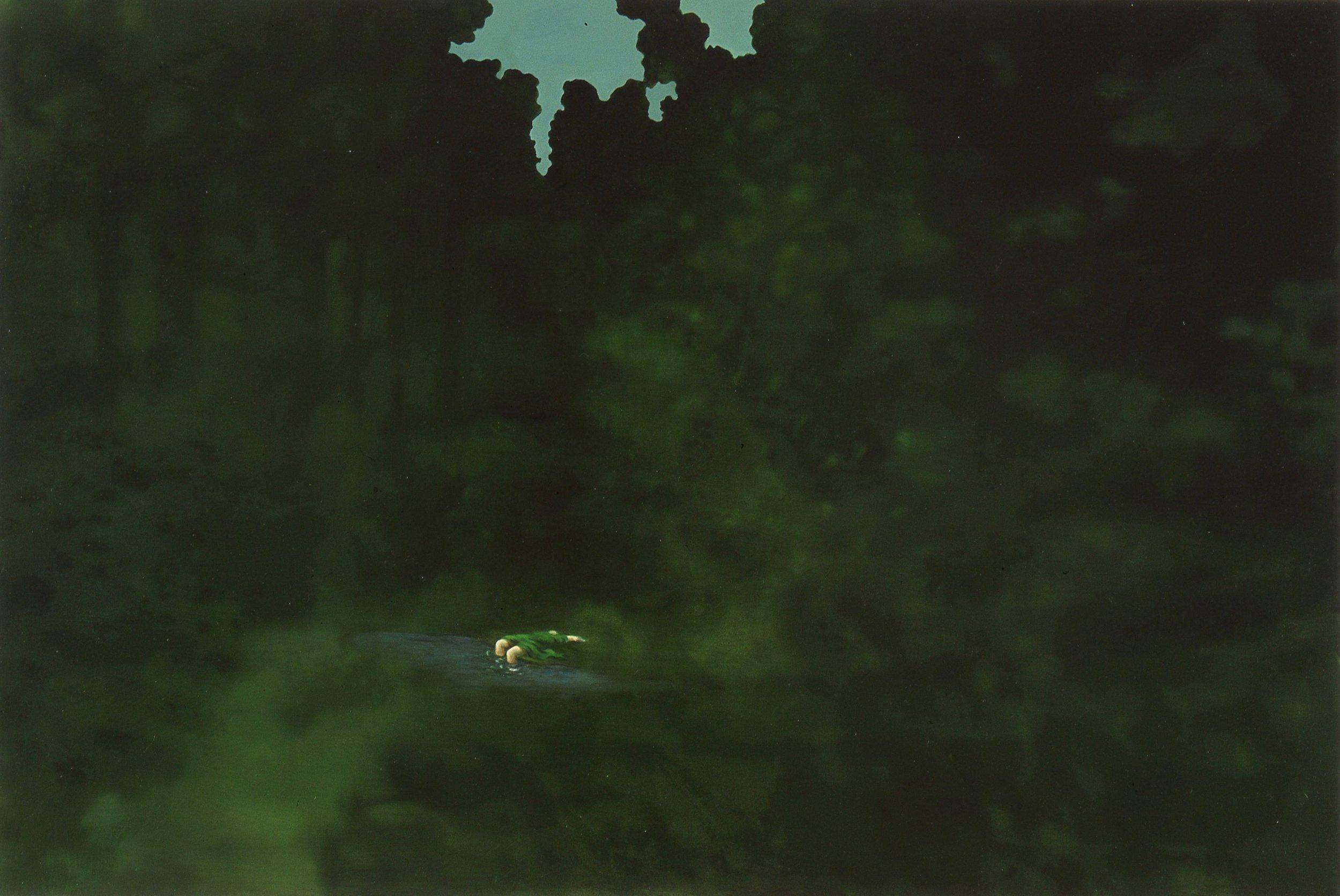 Somnambul  73x110cm opl 2002