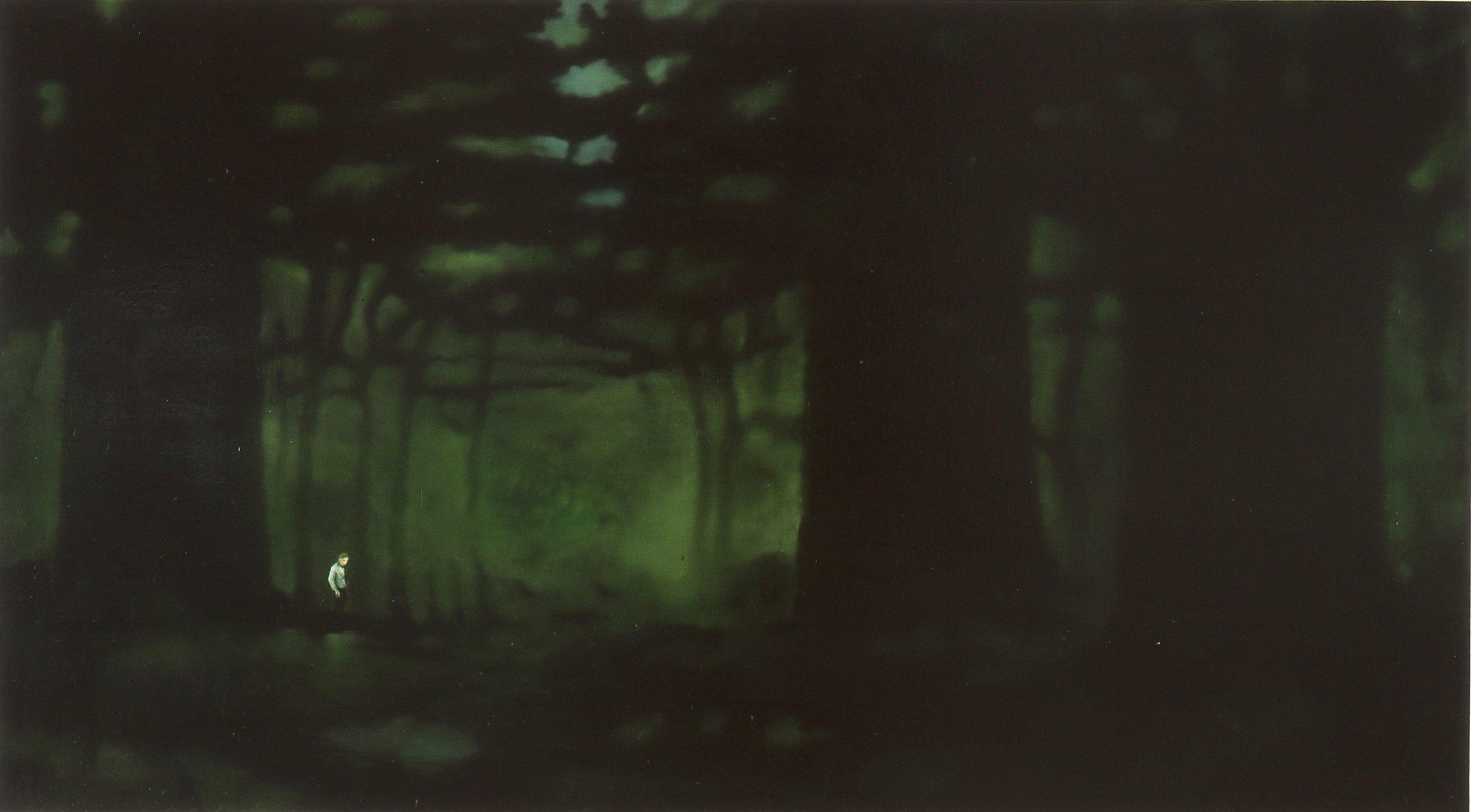 Tusmørkevandrer  67x122cm olje på plate 2002