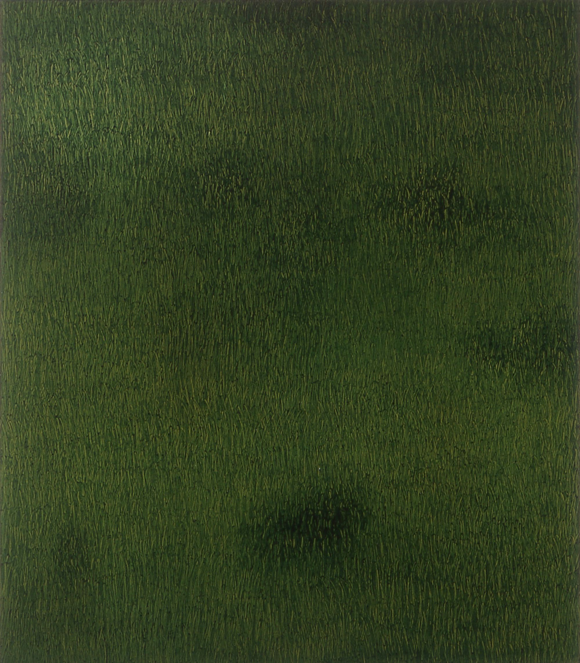 Gress med skygge  200x180cm opl 2000
