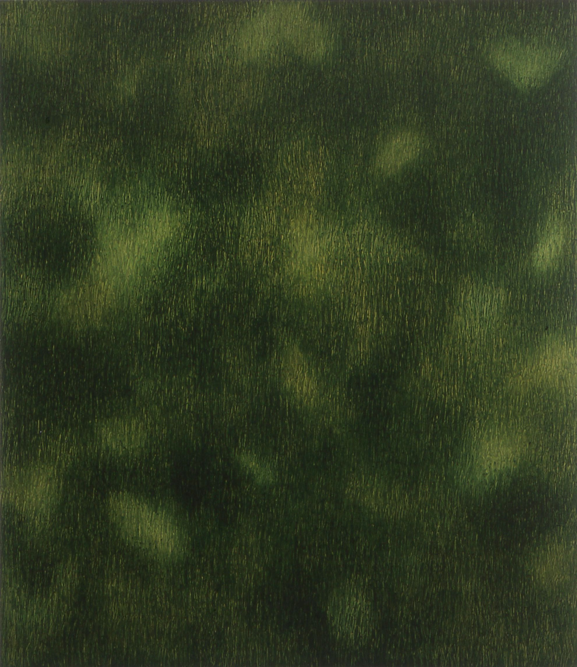 Mørkt gress  170x150cm opl 2000
