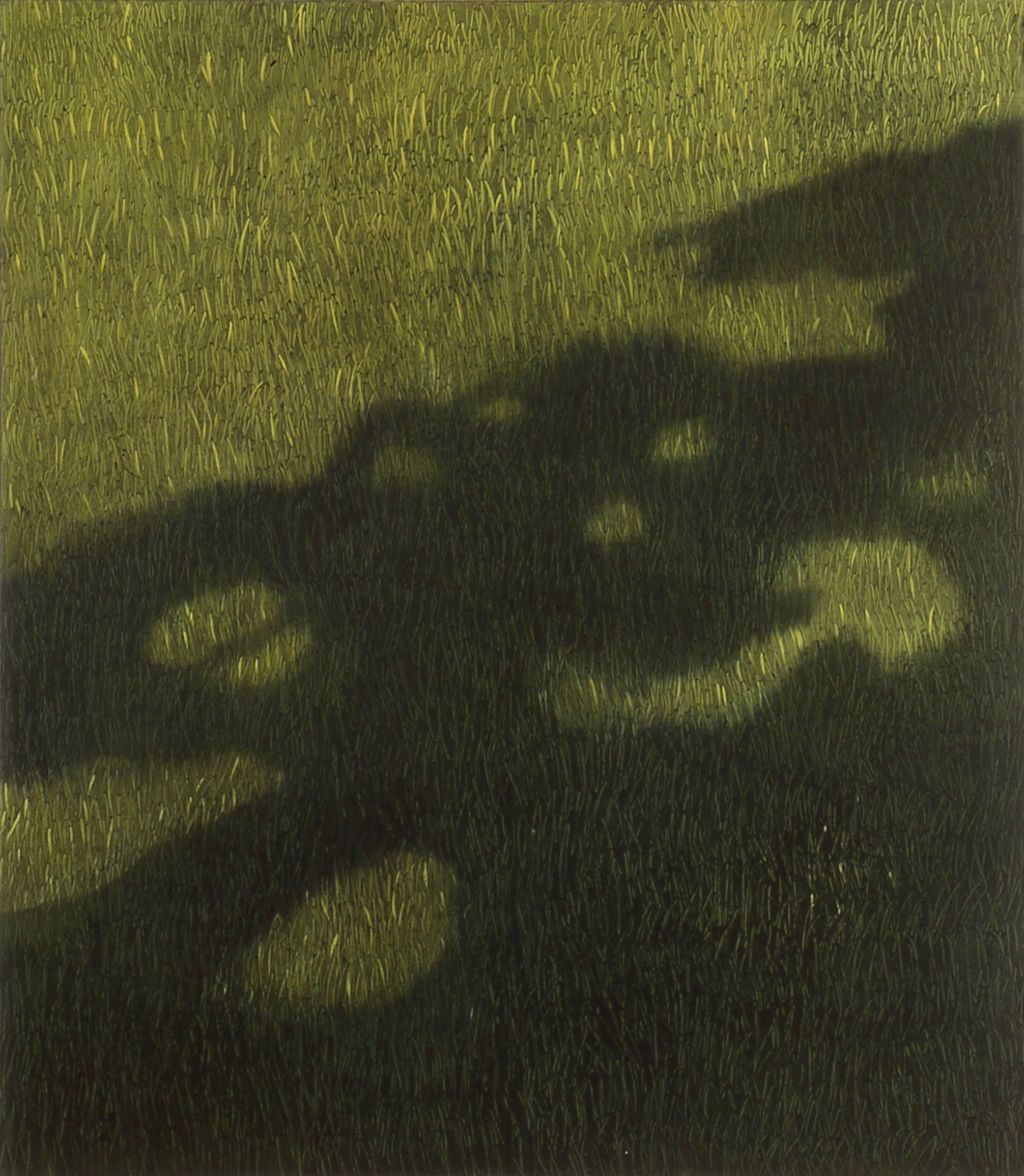 Gress med lys og skygge  170x150cm opl 2000