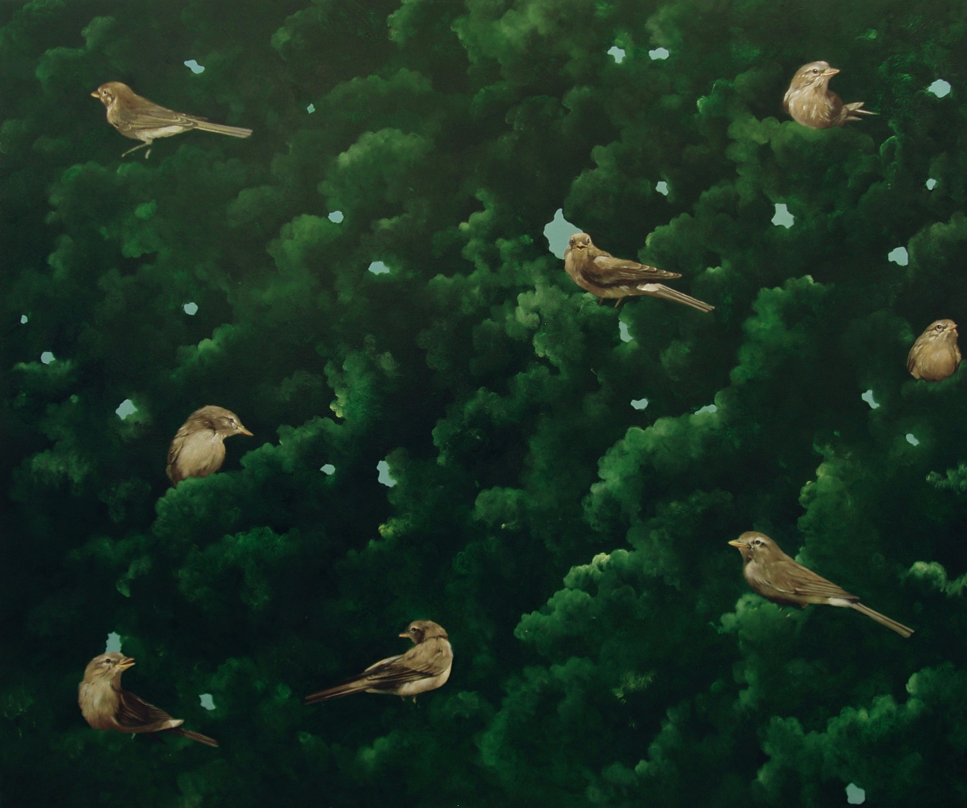 Birds, tell me  99x125cm opl 2004