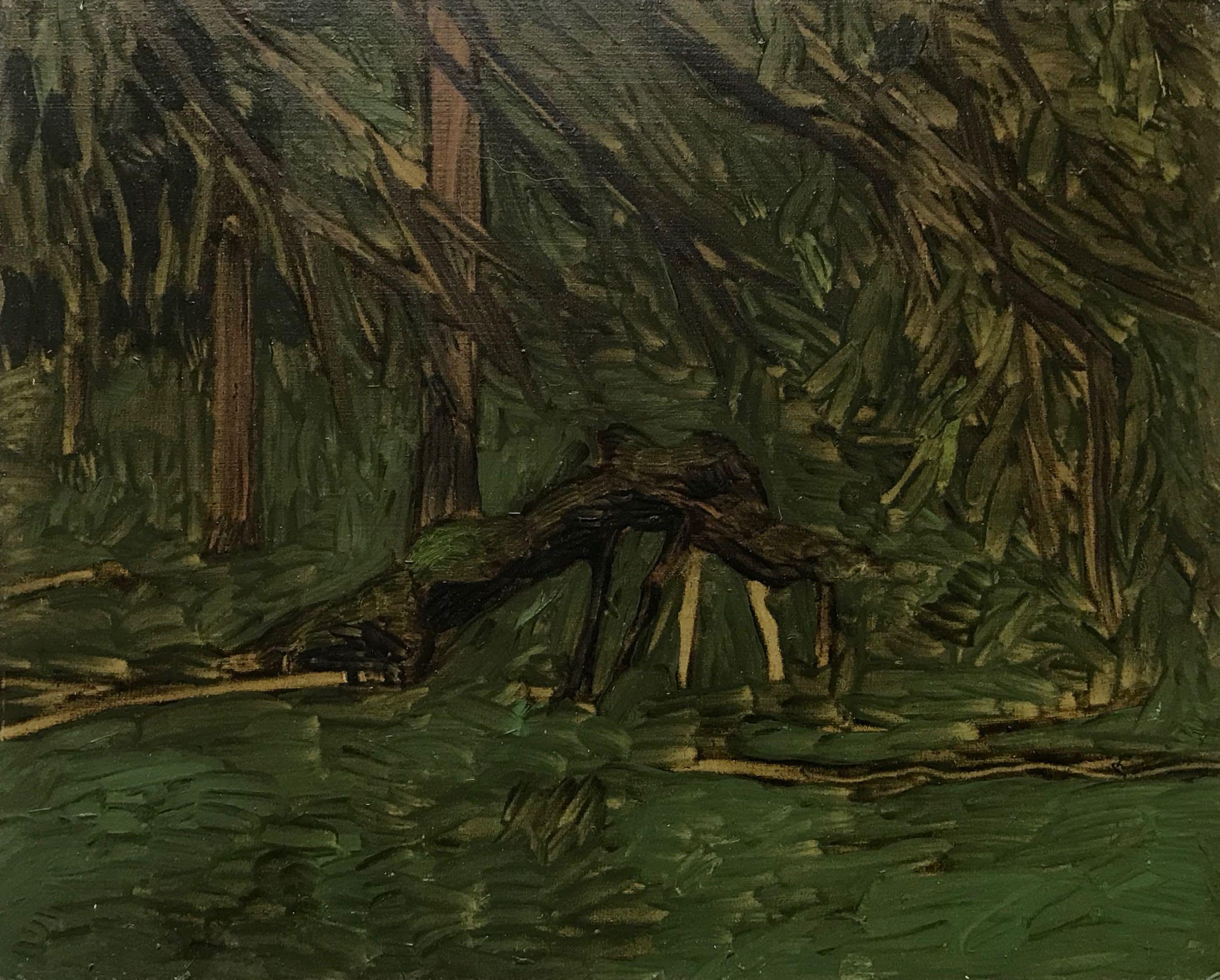 Skogskisse 20x25 cm olje på plate
