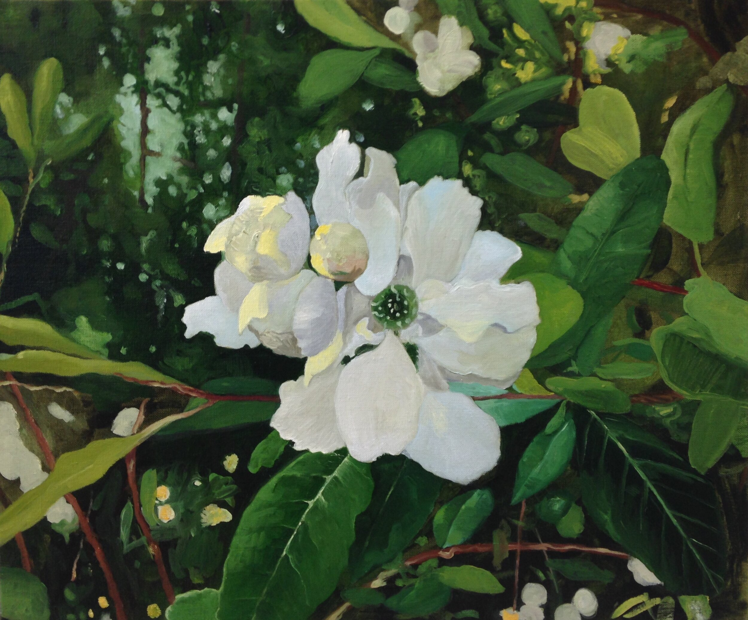 """""""Hvit blomstring"""""""