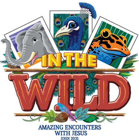 VBS19 Graphics.png