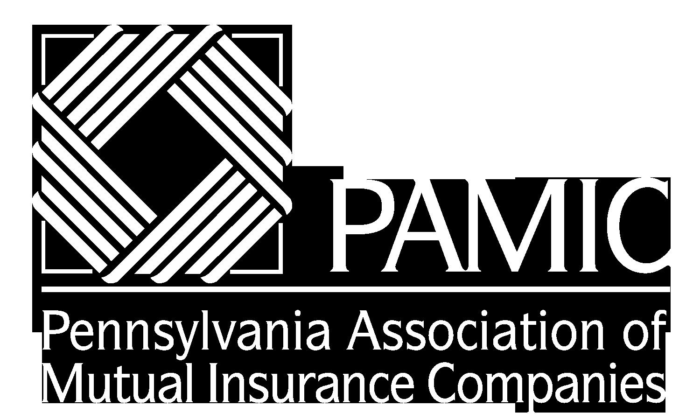 PAMIC Logo Full- White - TransparentBckgrnd.png
