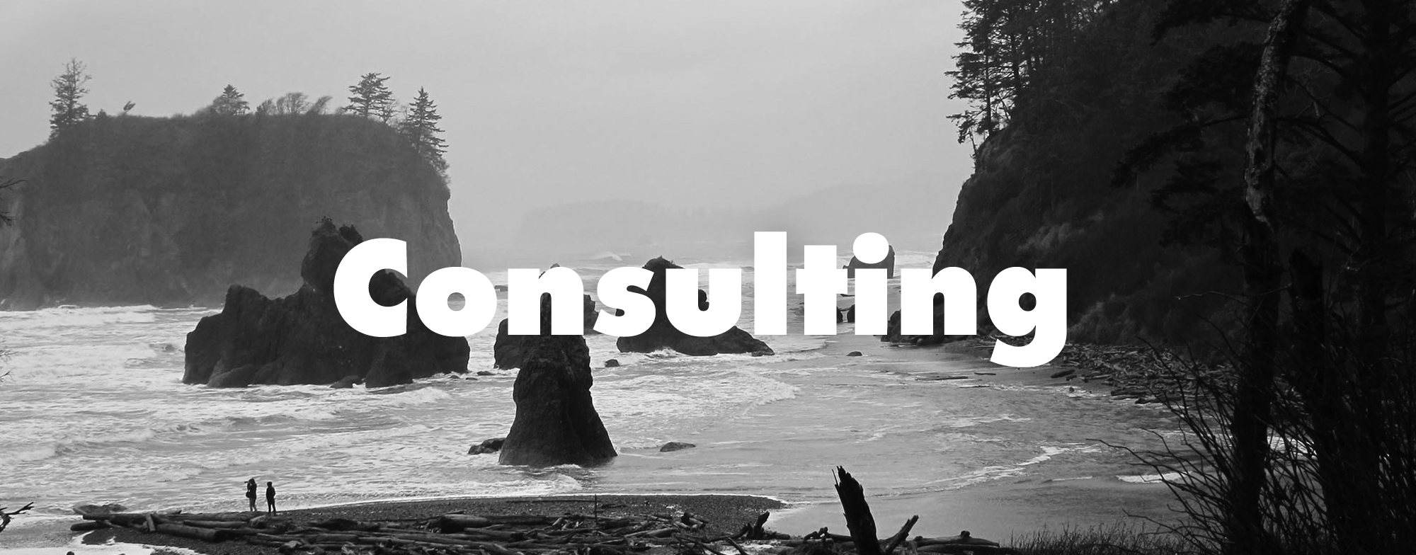 Header-consulting.png