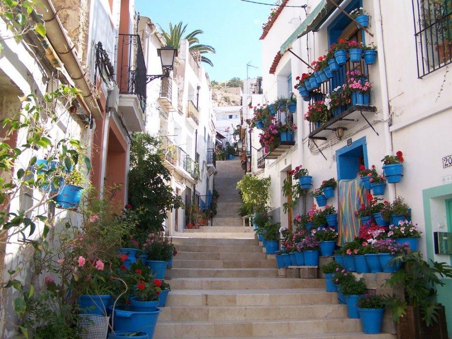 santa-cruz-neighbourhood.jpg