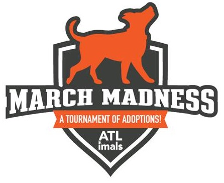 - For the month of March, we have selected a handful of Most Valuable Pups that we believe are the best candidates to become Champions of your heart! Check back to see which MVPs have been selected as champions and which remain ready for their forever home.