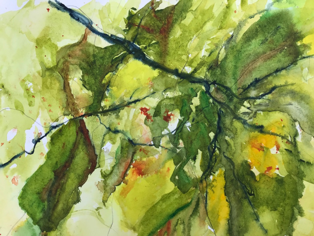 Through the Summer Trees_B.jpg