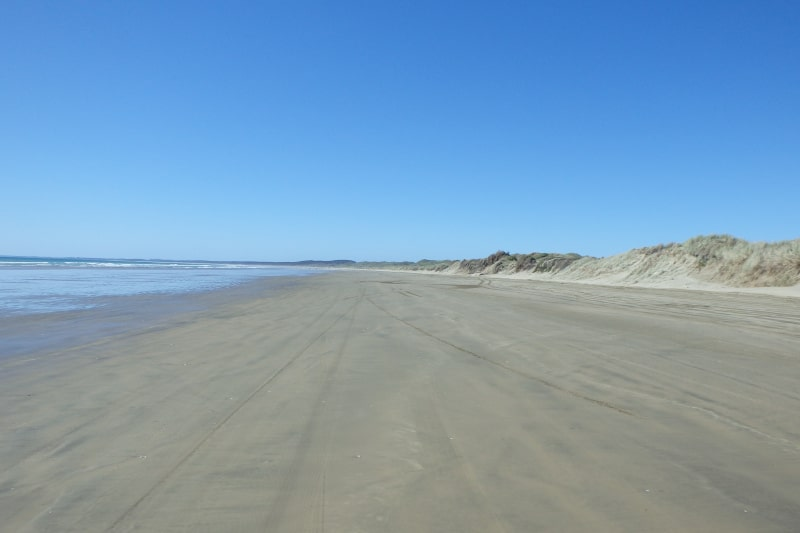 The miles of sand on 90 mile beach! Driving along it was a highlight of my trip on the north island.
