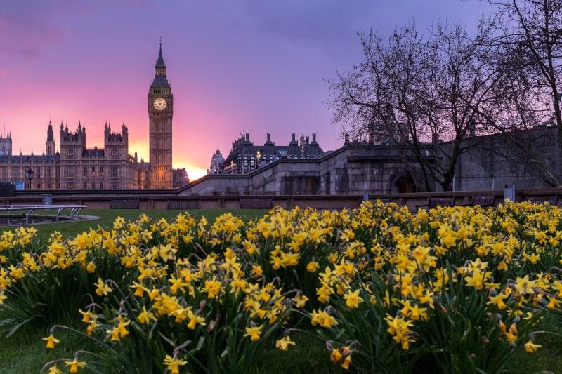 Westminsterpark-min.jpg