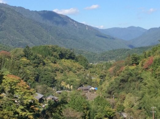 It's a small picture, but it gives an undeniable sense of the immense beauty of the Nakasendo trail!