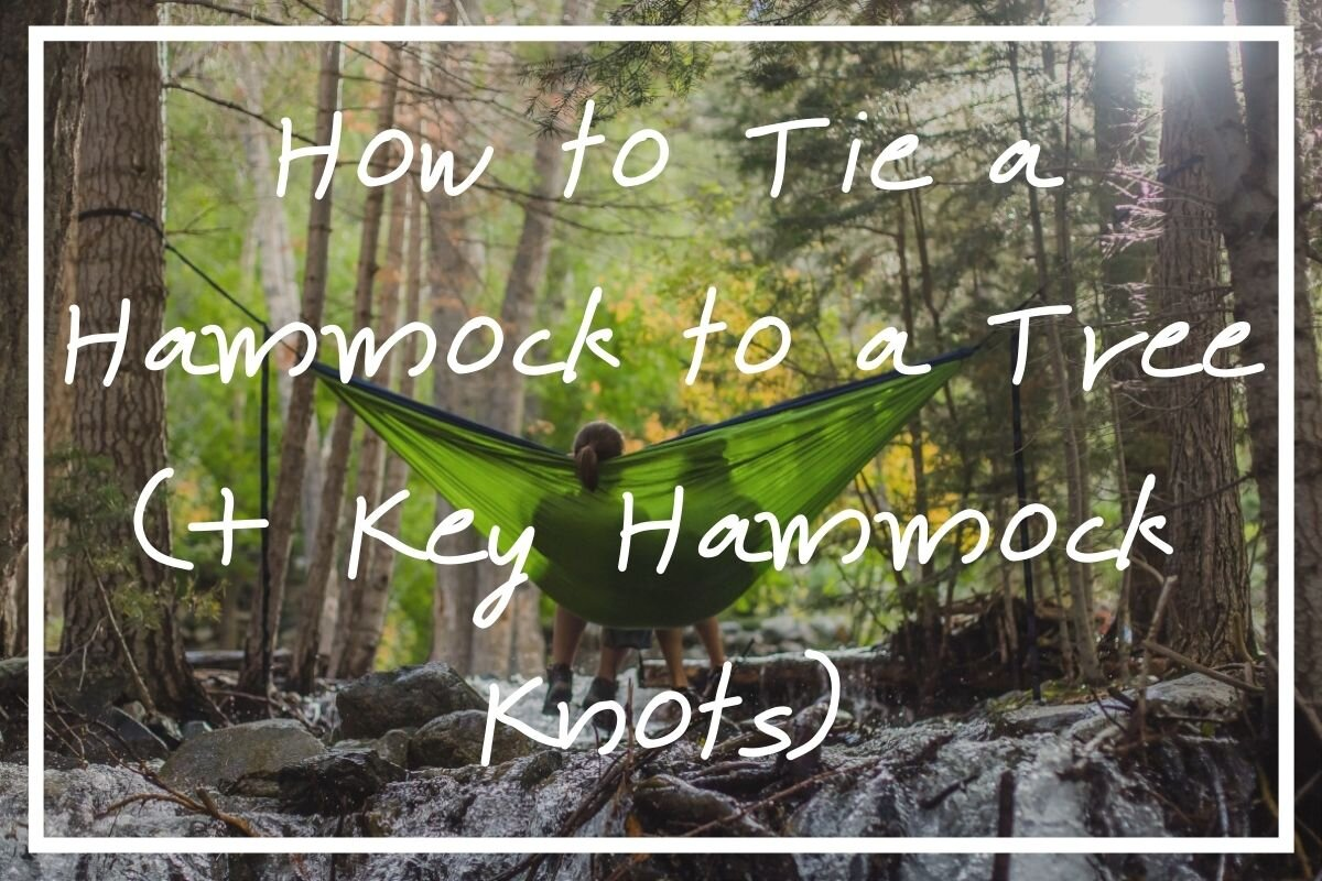 Wondering how to tie a hammock to a tree? I hope this post helps!